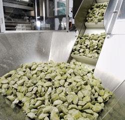 Produzione di Pasta Fresca all'Uovo